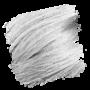 Crazy Color Semi-Permanent Hair Dye - silver sample